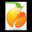 Peach Code Software